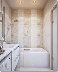 flīzes vannas istabā